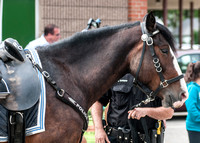 MPD Mounted Patrol-3750_