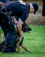 News K9 Competition-4775