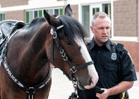 MPD Mounted Patrol-3779_